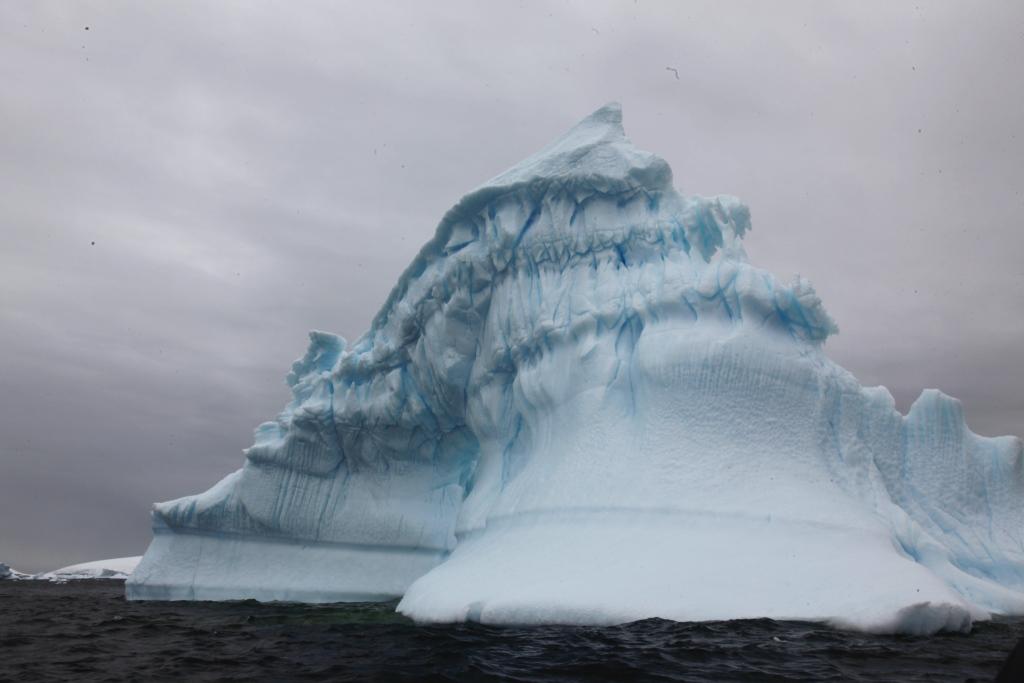 _MG_8446 iceberg 1